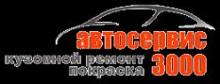 Логотип компании 3000