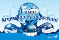Логотип компании Агентство Путешествий ТРИ КИТА